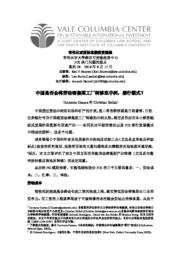 thumnail for No_28_Chinese_version.pdf