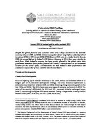 thumnail for Ireland_IFDI_-_FINAL_-_March_27_2013.pdf