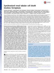 thumnail for PNAS-2014-Linkermann-16836-41.pdf