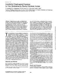 thumnail for J_Cell_Biol-1986-Lombardi-1965-70.pdf
