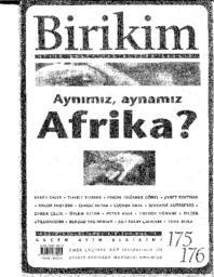 thumnail for Birikim_Article.pdf