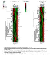 thumnail for 1741-7007-11-99-S10.PDF