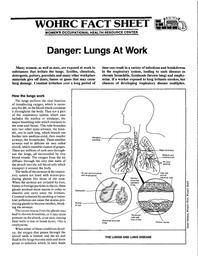 thumnail for factsheet_lungs.pdf