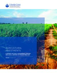 thumnail for 05b-CCSI-Investment-in-agriculture-primer-mr.pdf