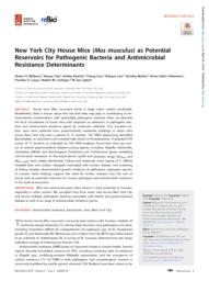 thumnail for mBio-2018-Williams- (1).pdf