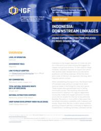 thumnail for case-study-indonesia-downstream-linkages.pdf