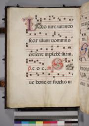 Leaf 071 - Verso