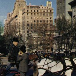 Carriages on 59th Street, N...