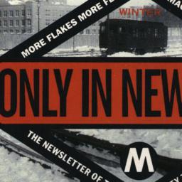 Only in New York Winter Mor...