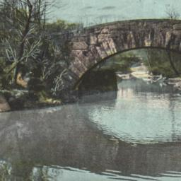 Vine Arch Bridge, Central P...