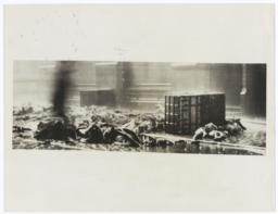 Bodies of Triangle Shirtwaist Factory fire victims on the sidewalk