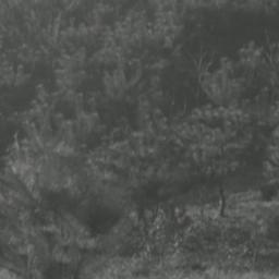 Korean landscape footage