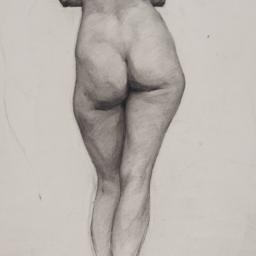 [Nude Study, Standing, Back...