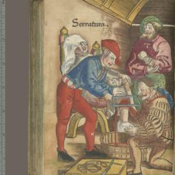 Feldtbuch der Wundartzney