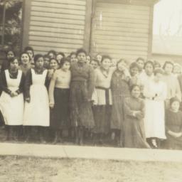 Group of Female Dakota Stud...