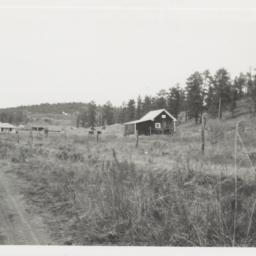 Whitetail, New Mexico