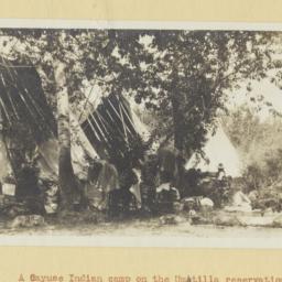 Cayuse Indian Camp on the U...