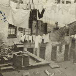 Clotheslines Over Rooster a...